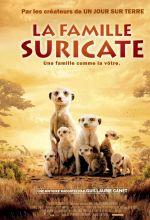 Постер сурікати, meerkats, the