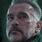 Netflix розробляє шпигунський серіал з Арнольдом Шварценеггером
