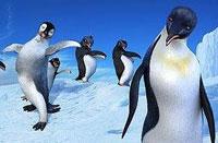 Императорские пингвины против Бонда!
